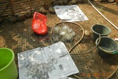 cuci-lampu-kristal-ibu-ayu-reorder-08