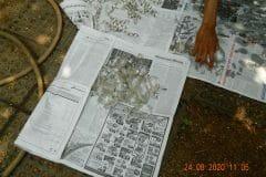 cuci-lampu-kristal-ibu-ayu-reorder-16