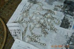 cuci-lampu-kristal-ibu-ayu-reorder-18