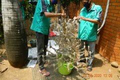 cuci-lampu-kristal-ibu-ayu-reorder-31