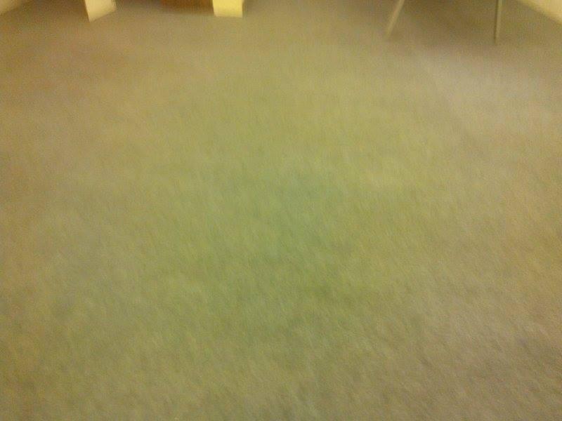 cuci-karpet-kantor_111