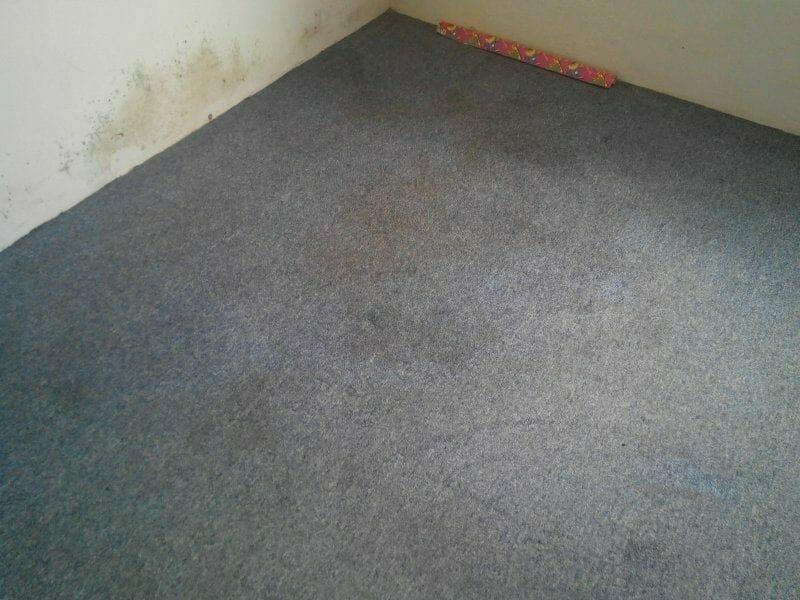cuci-karpet-kantor_116