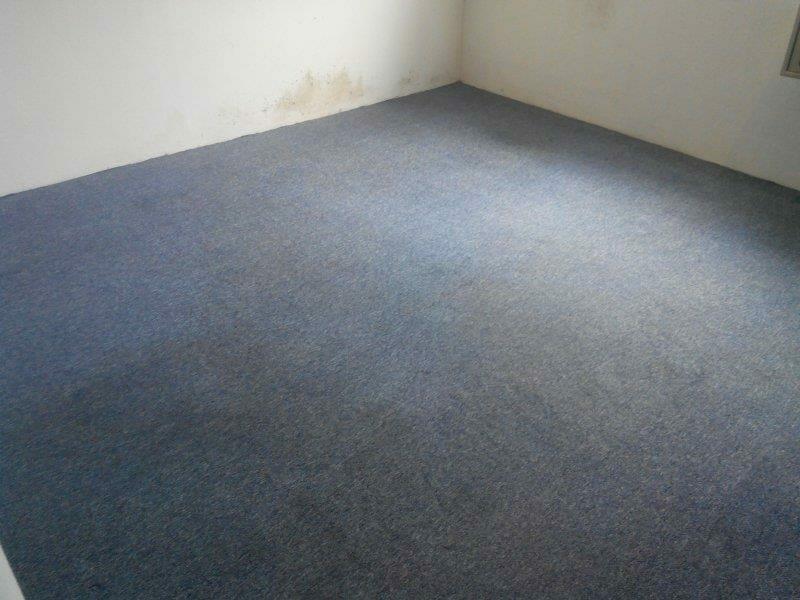 cuci-karpet-kantor_119