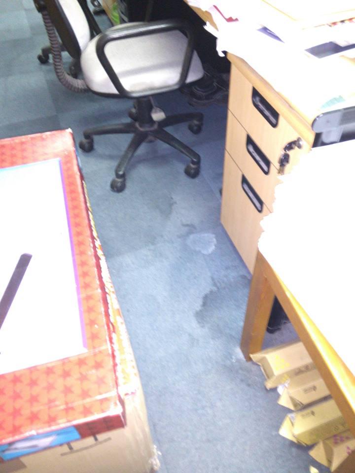 cuci-karpet-kantor_123