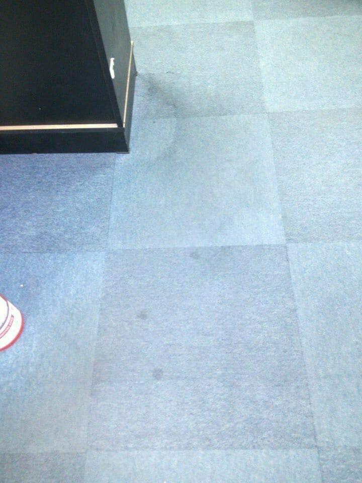 cuci-karpet-kantor_124