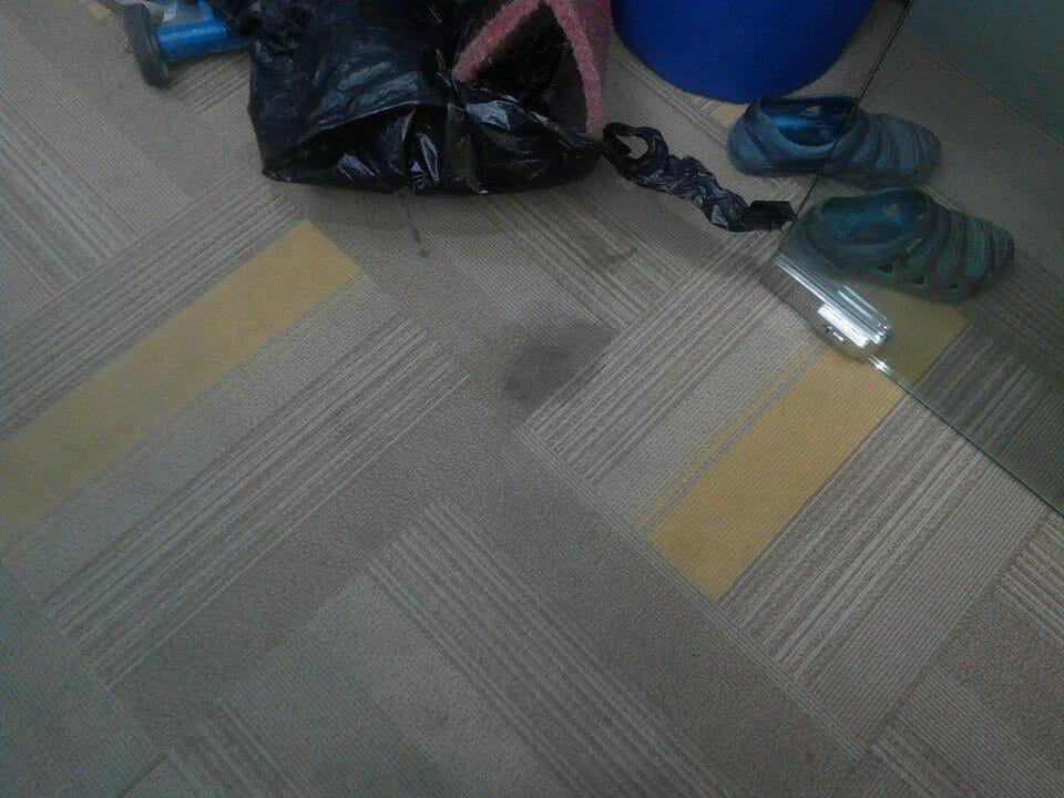 cuci-karpet-kantor_154