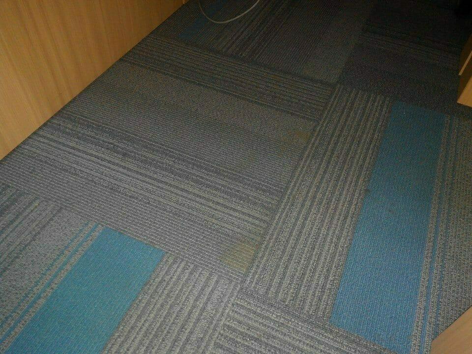 cuci-karpet-kantor_159
