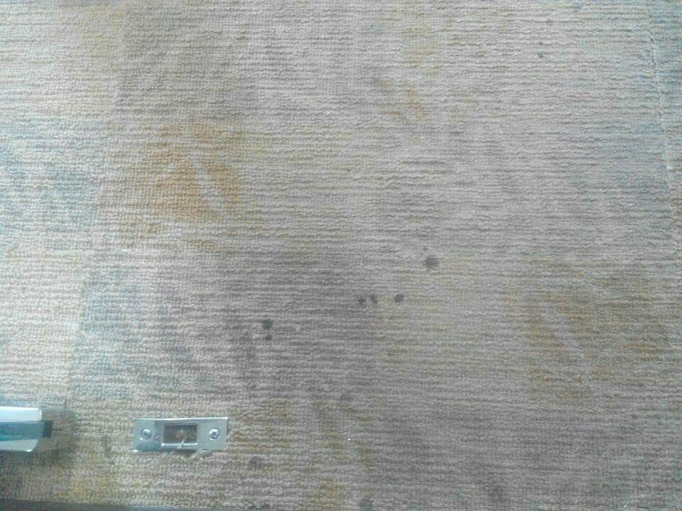 cuci-karpet-kantor_167