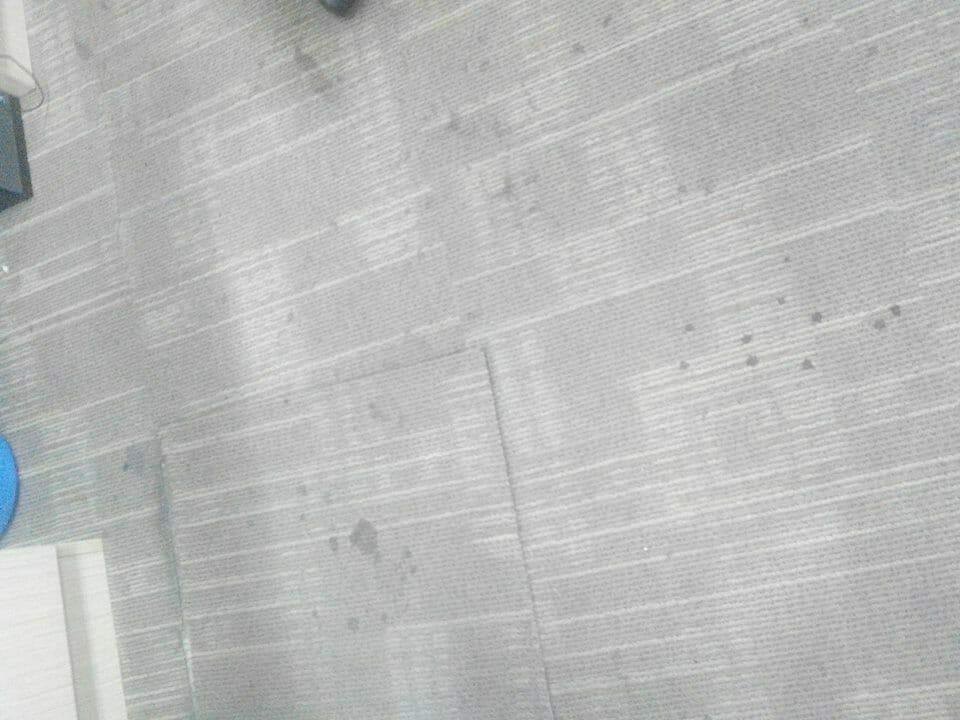 cuci-karpet-kantor_173