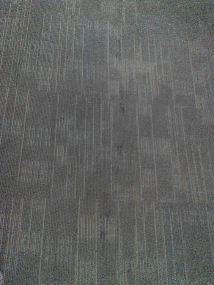 cuci-karpet-kantor_174