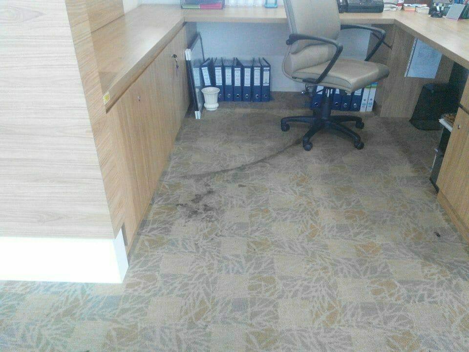 cuci-karpet-kantor_185
