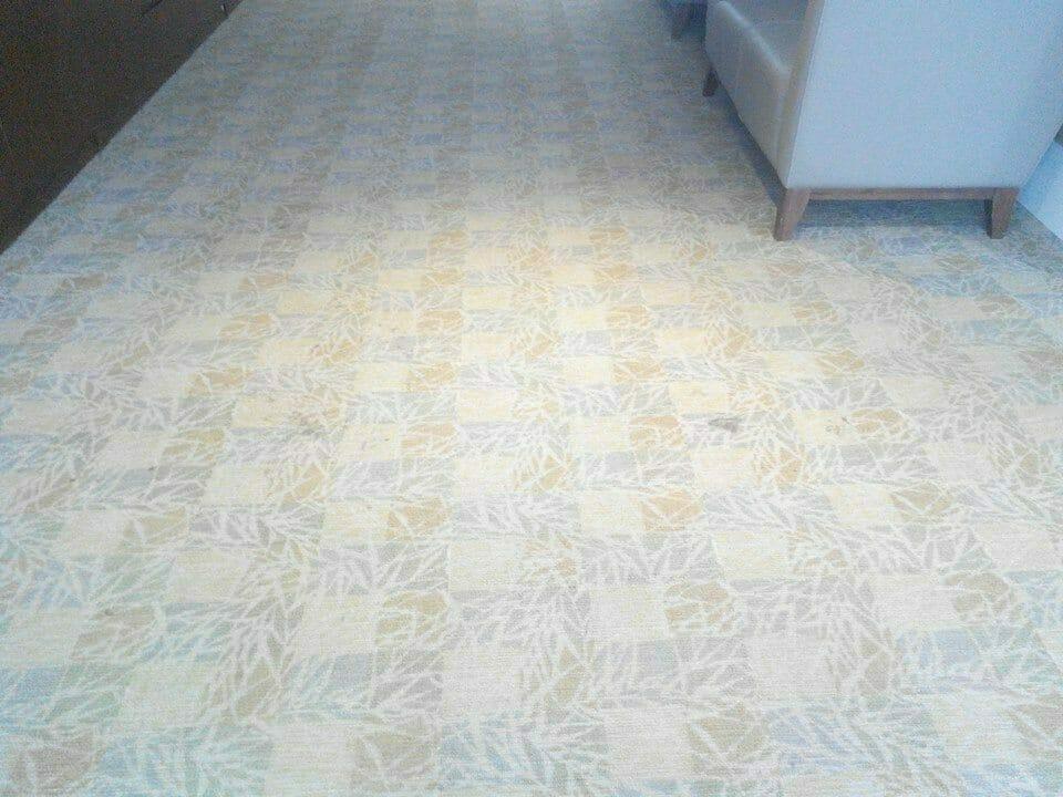 cuci-karpet-kantor_186