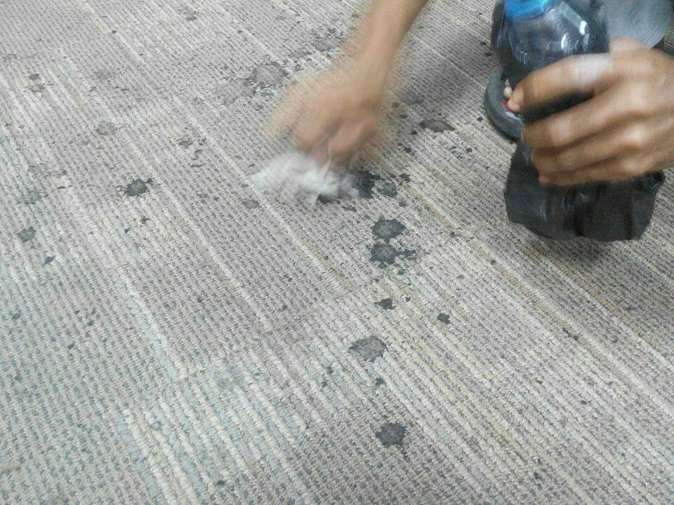 cuci-karpet-kantor_195