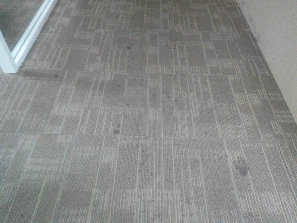 cuci-karpet-kantor_240