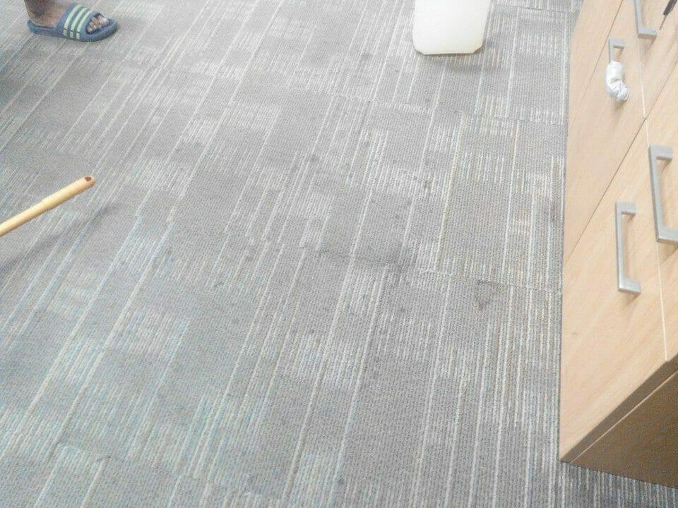 cuci-karpet-kantor_241