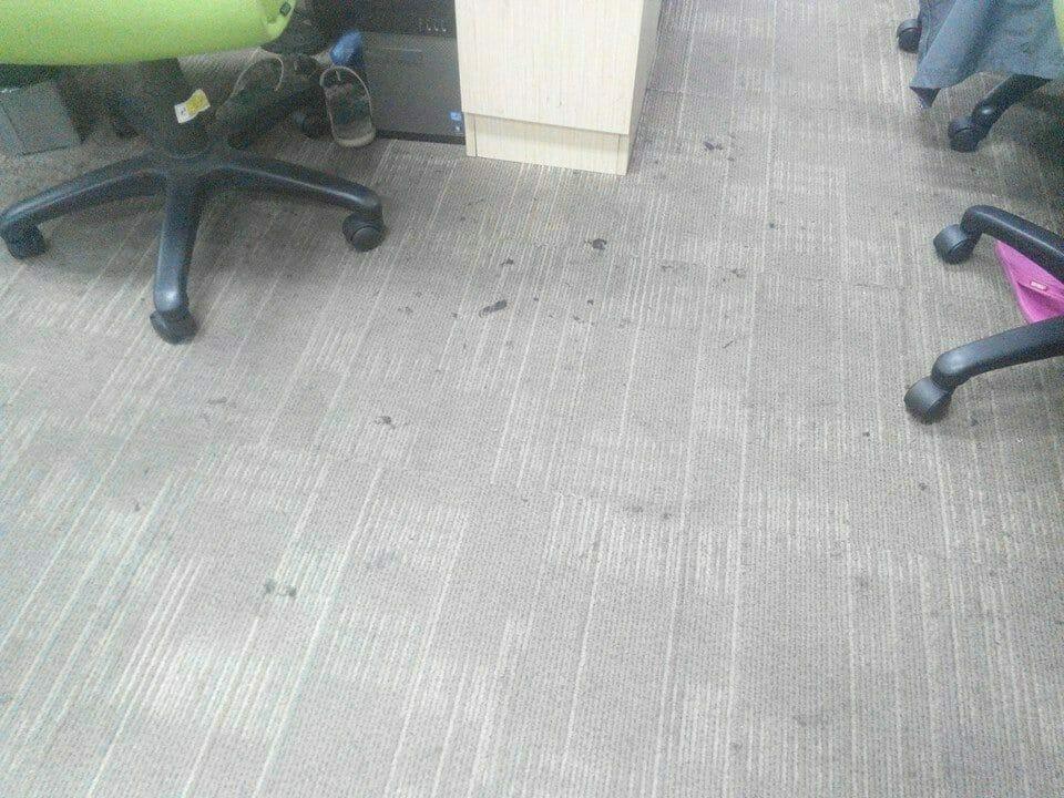 cuci-karpet-kantor_247
