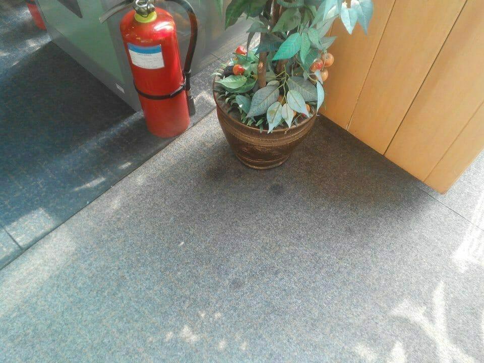 cuci-karpet-kantor_283