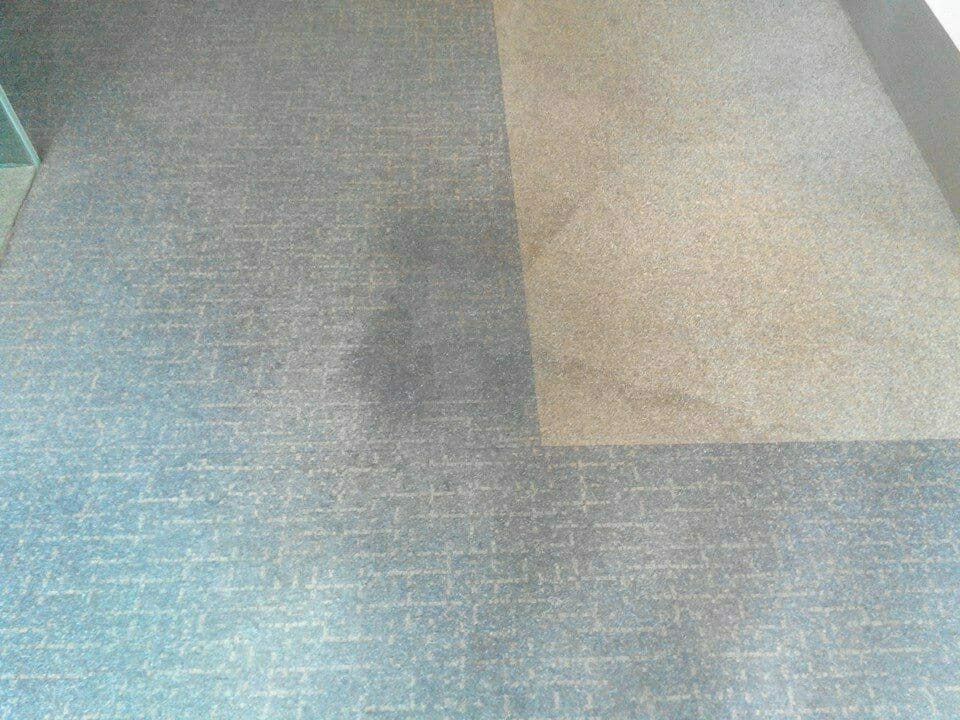 cuci-karpet-kantor_284