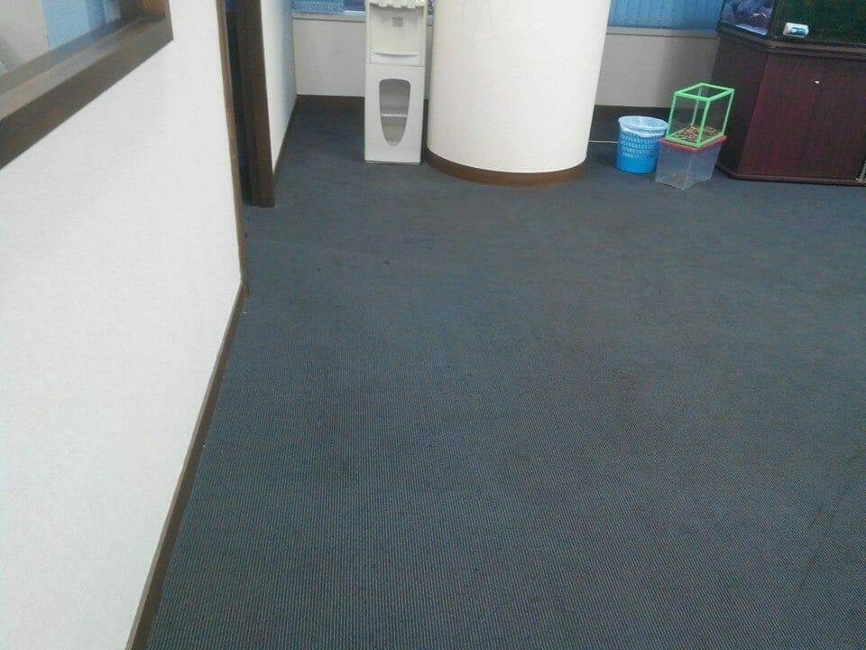 cuci-karpet-kantor_289