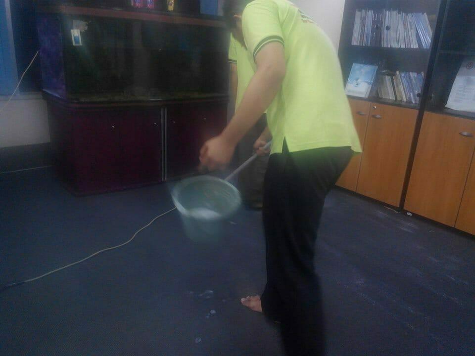 cuci-karpet-kantor_295