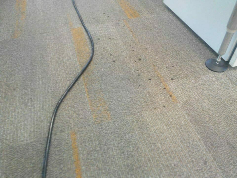 cuci-karpet-kantor-ocbc-sekuritas-28