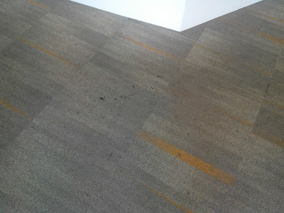cuci-karpet-kantor-ocbc-sekuritas-30
