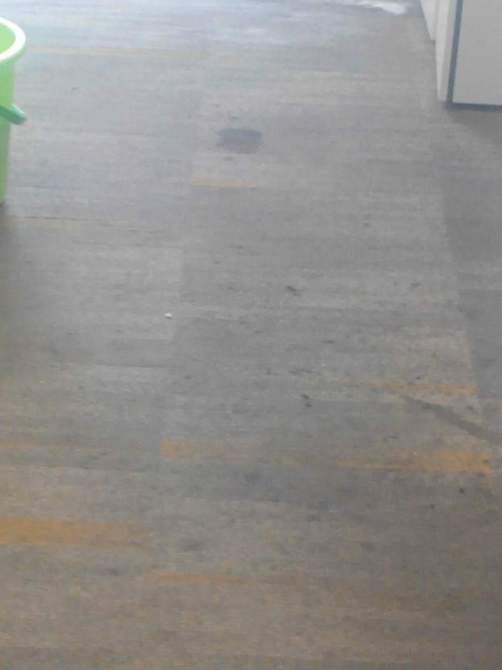cuci-karpet-kantor-ocbc-sekuritas-32