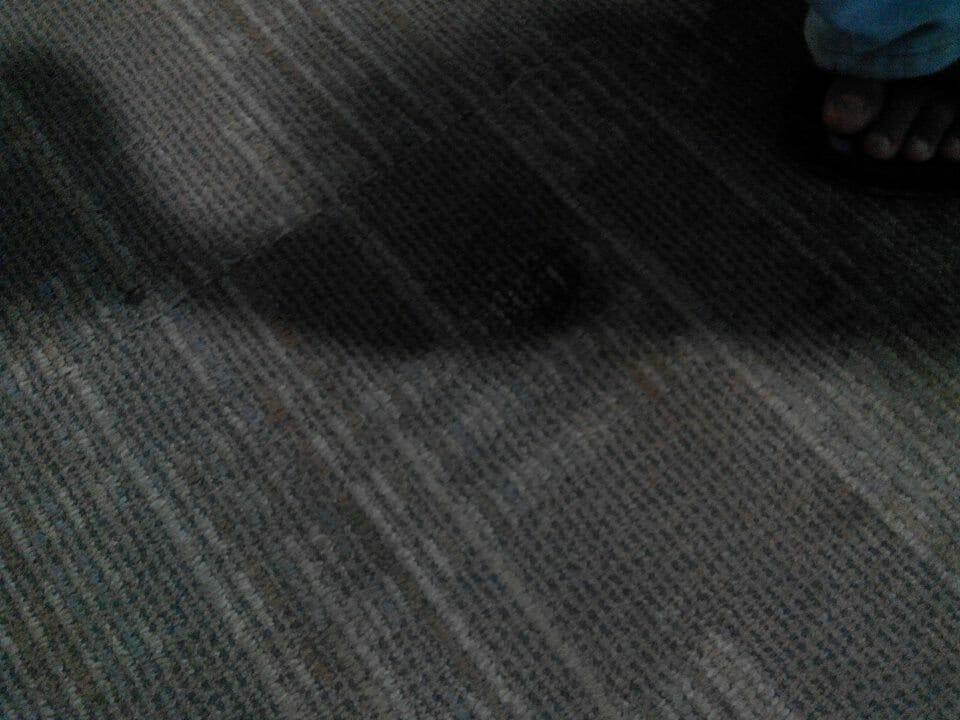 cuci-karpet-kantor-pt-pertamina-tahap-1-21