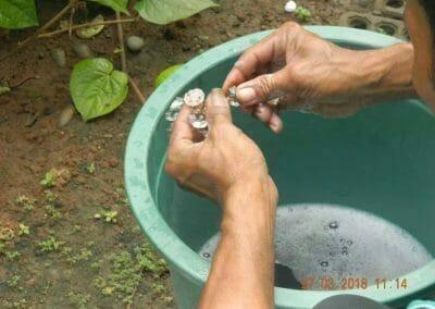 cuci-lampu-kristal-ibu-ayu-23
