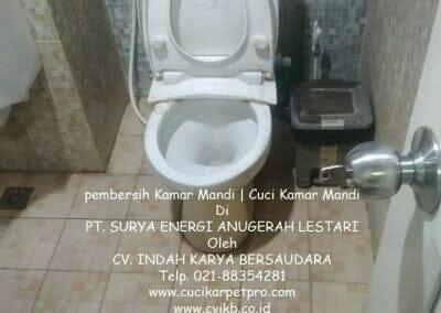 pembersih-kamar-mandi-di-pt-seal-10