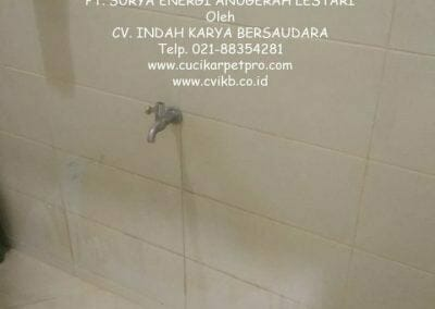pembersih-kamar-mandi-di-pt-seal-11
