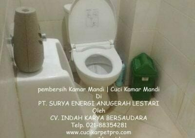 pembersih-kamar-mandi-di-pt-seal-13