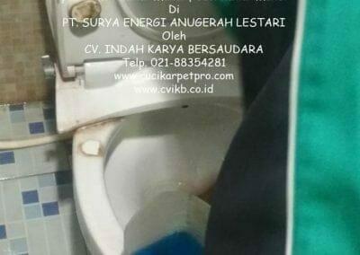 pembersih-kamar-mandi-di-pt-seal-14