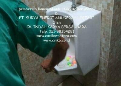 pembersih-kamar-mandi-di-pt-seal-21