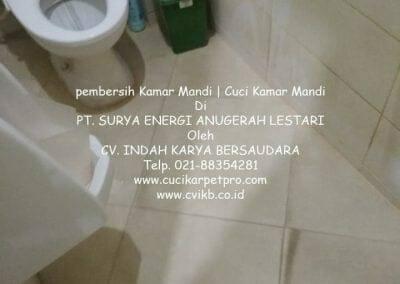 pembersih-kamar-mandi-di-pt-seal-28