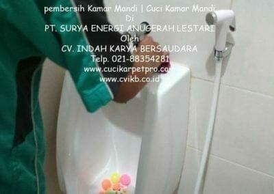 pembersih-kamar-mandi-di-pt-seal-33