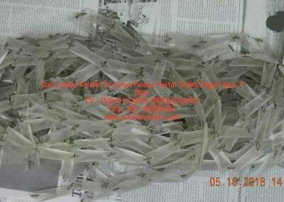 cuci-lampu-kristal-di-lotus-palace-sesi-2-64
