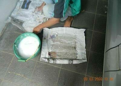 cuci-lampu-kristal-di-mutiara-sanggraha-19