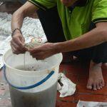 cuci lampu kristal bapak warnot oleh Jasa Cuci Lampu Kristal gbr-10
