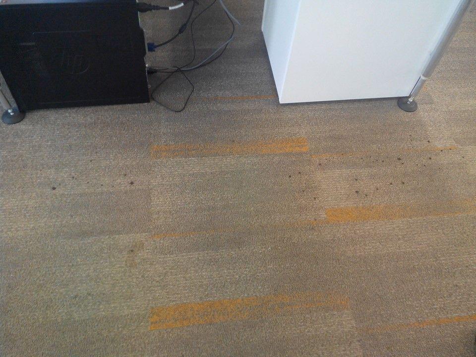 cuci karpet kantor ocbc sekuritas gambar 15