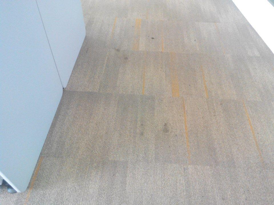 cuci karpet kantor ocbc sekuritas gambar 29