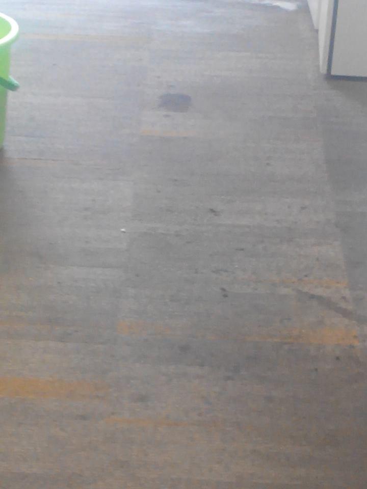 cuci karpet kantor ocbc sekuritas gambar 32